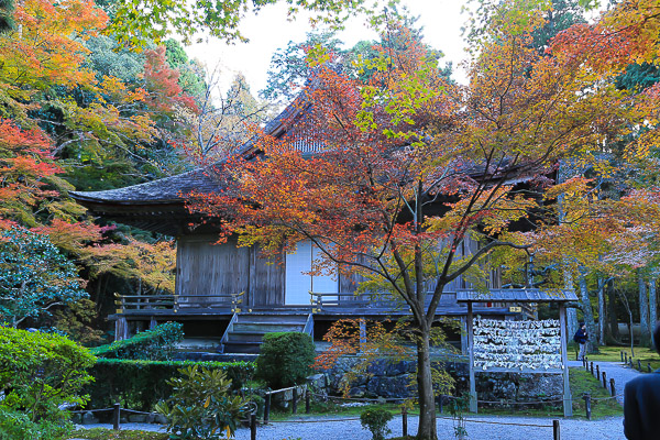 kyoto-autumn-018