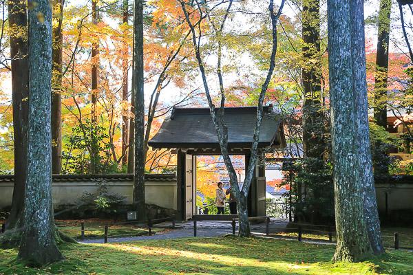 kyoto-autumn-019