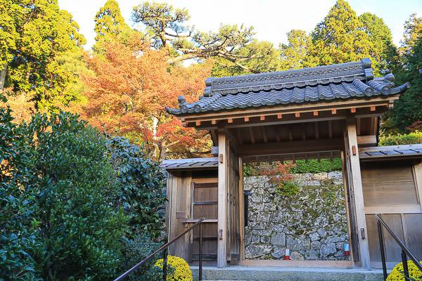 kyoto-autumn-031