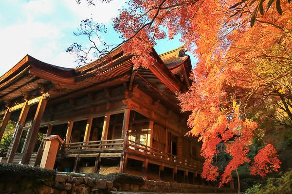 kyoto-autumn-038