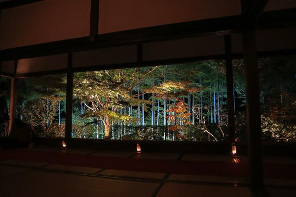 kyoto-autumn-042
