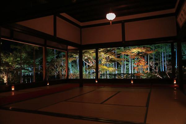 kyoto-autumn-043