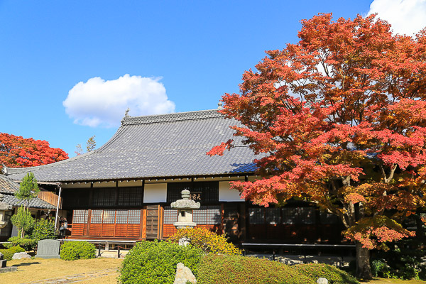 kyoto-autumn-044