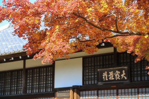 kyoto-autumn-045
