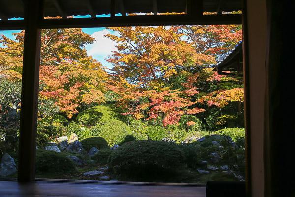 kyoto-autumn-046