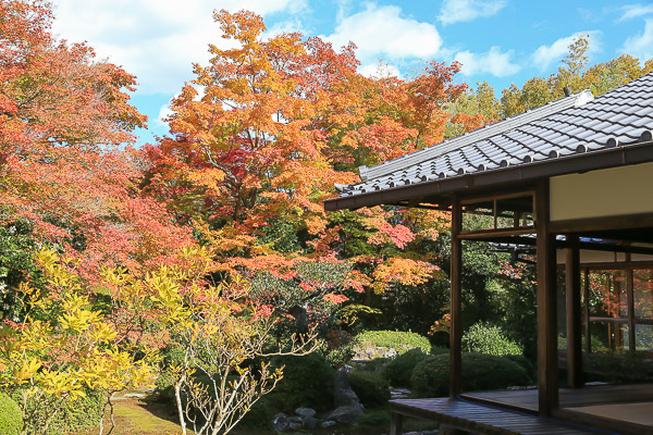 kyoto-autumn-050