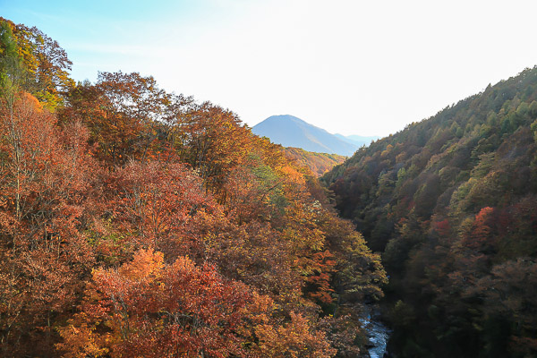 touhoku-kouyou-058