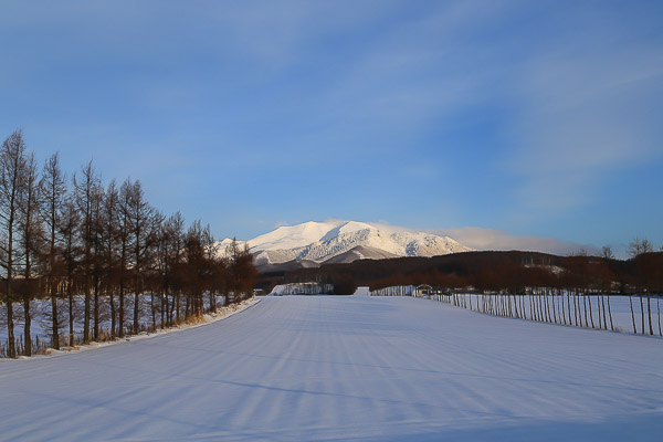 doutou-winter-027