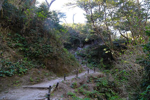 koudushima-049