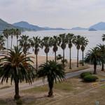 うさぎ島をゆっくりと満喫できるホテル、「休暇村 大久野島」に泊まったよ
